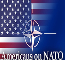 Over Eight in Ten American Voters Favor US Continuing to Be Part of NATO
